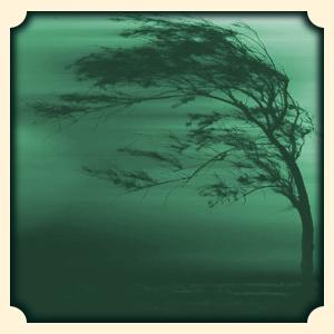 Wiatr sennik