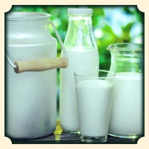 Sennik mleko